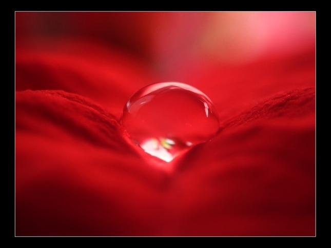Kvapka v červenom kabáte