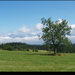 Tatry v oblakoch