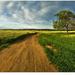 Cestou k vesnici