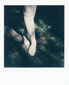 The Polaroid #143