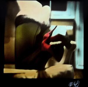 The Polaroid #26