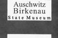 Auschwitz 16