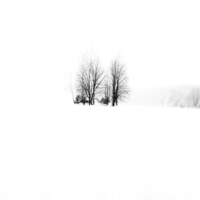 Biele ticho