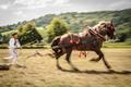 Furman s koníkom