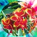 Kvetinka  108