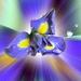 Kvetinka  72