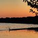 Podvečerný Dunaj
