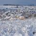 Zima v Trnovom
