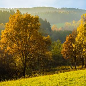 Jesenné farby