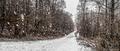 Snehové impresie II