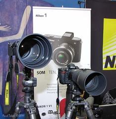 Hvezdári z Nikonu