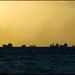 Kolumbova nočná mora