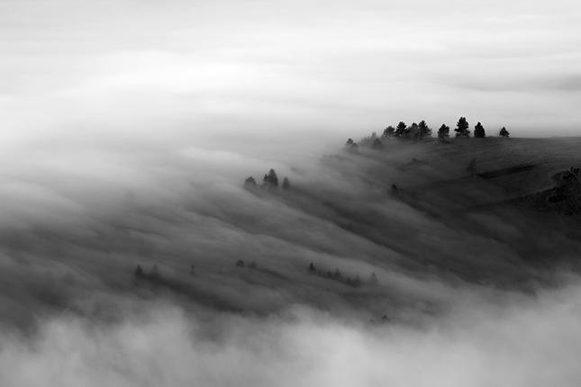 V prúde hmly