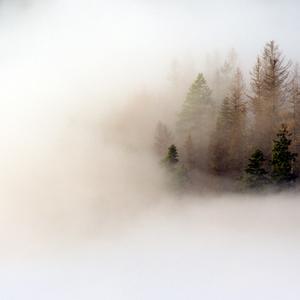 V objatí hmly