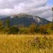 Jeseň pod Belianskými Tatrami