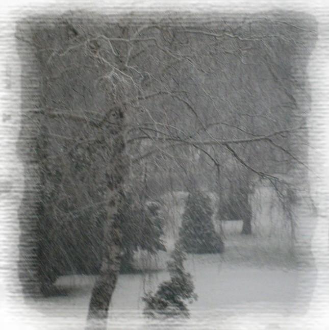 Snežííí
