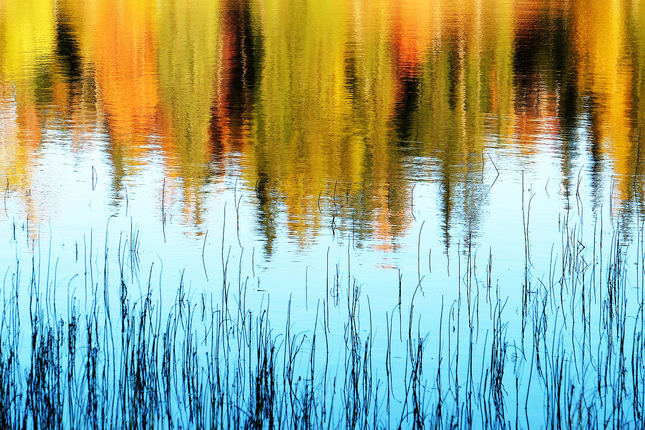 ...utopená  jeseň...