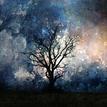 strom v stráni
