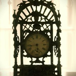 Nesmrteľnosť času