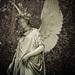 Anjel II
