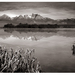Tatranská panoráma s rybníkom
