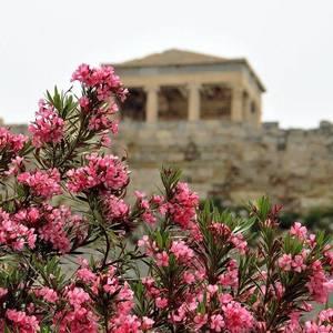 Jarné Atény