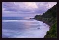 V Karibiku