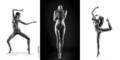 Sculpture body