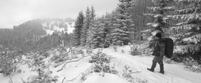 zimný chodník v Strážovských vrc
