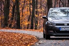 VW Autumn