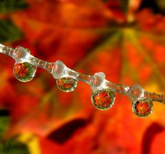 ...Jesenna...