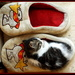 sleeper & slipper