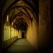 za múrmi kláštora