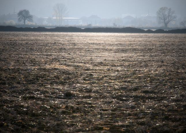 Pavučinove pole