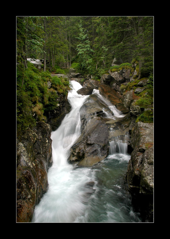 Studenovodský potok 2