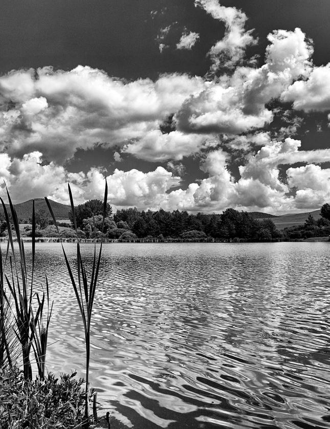Od rybníka