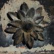 Železný kvet