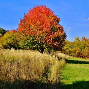 Jeseň nad Čučmou