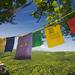 Tibetske modlitby v Povazskom In