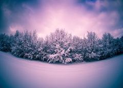 Zimnou krajinou