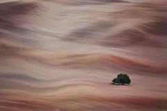 jesenná surfovačka