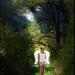 Anjel uprostred lesa