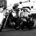 motorkarske rande