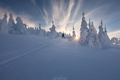 * Po stopách skialpinistu *