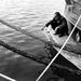 ...miserable fisherman...