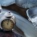 ...frozen time...