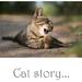 Cat story...
