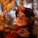 jesenne pohlady