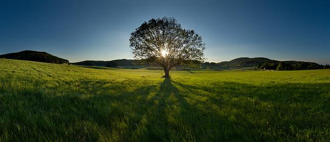 O slnku v korune...