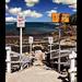 Coogee Beach 3
